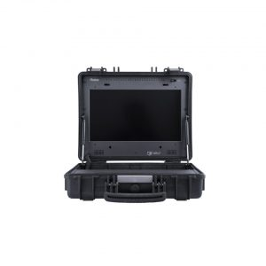 RUIGE TL1730HDA-CO Carry-on Monitor
